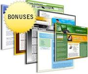BUSINESS WEBSITE ONLY RS.3000