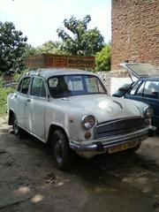 Shree Jay Motor Draving Training School Varanasi