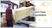 Packers & Movers services in Noida