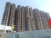 Raj Residency 2/3 BHK Apartments in Noida Extension through RealtorPro