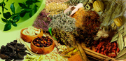 Herbal & Ayurvedic Medicines Products Manufacturer,  Supplier In Kanpur