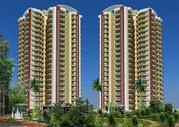 Huge flats in Gardenia Glory Sector 46 Noida