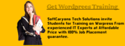 Enjoy Special Offers on Wordpress Training At SoftCrayons Tech Solutio