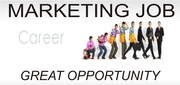 Marketing Business Company in india.
