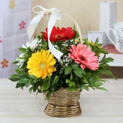 flowers delivery to noida