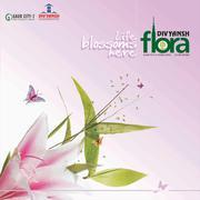 Divyansh Flora,  Gaur City-2,  Noida Extension