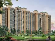 Choose Omaxe Grand for comfortable lifestyle with world all amenities