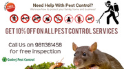 Discount-10% OFF on all Pest Control Services Contact Godrej Pest Cont