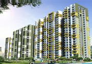 Ace Platinum by Ace Group India