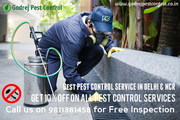 Special Offer-10% OFF on all Pest Control Services