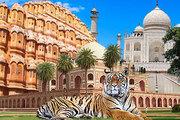 Golden Triangle Tiger Safari