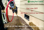 Got Pest Problem..?  Get all Quality Pest Control Services at 10% off