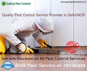 FLAT 10% OFF on all Pest Control Treatments-9811381458