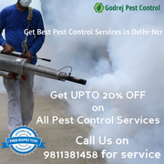 Spcl. Offer-UPTO 20% OFF on all Pest Control Treatments in Delhi/Ncr