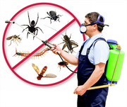 Pest control treatment services. Govt. Approved pest control provide