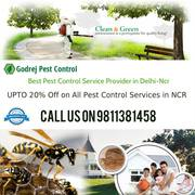 Reliable Pest Control South Delhi | Get Upto 20% OFF