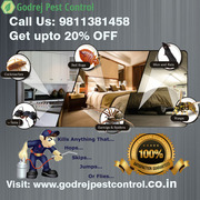 Get 20% Discount Pest Control in Delhi | South Delhi | Delhi NCR