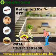 Creditable Pest Control South Delhi | Get 20% OFF
