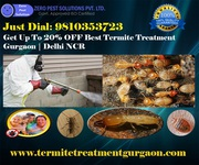 Discount Up to 20% Termite Treatment Gurgaon | Termite Control