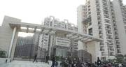 1bhk,  2bhk,  3bhk Flats For Sale In Gaur City Noida Extension