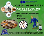 Outstanding Services Provider In Termite Treatment Gurgaon & Delhi/NCR