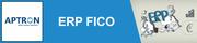 Project Based SAP FICO Training,  APTRON Noida
