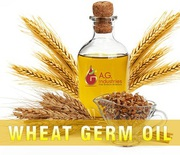 Wheat Germ Oil Exporters