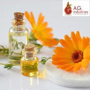 Calendula  Oil Suppliers