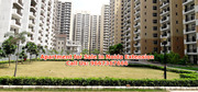Apartments for sale in Noida Extension 9667367666