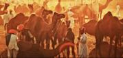 Explore Pushkar,  the 'Dev Bhumi' of Rajasthan