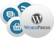 Best wordpress development Company in Delhi,  Noida
