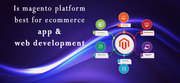 What is Magento? Explain By Redial India Solutions.