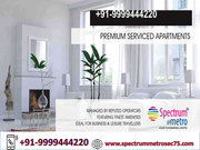 Spectrum Metro Sector 75,  Spectrum Metro Studio Apartment