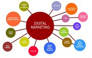 Digital Marketing in Noida