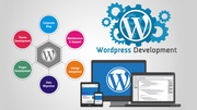 website development company in usa