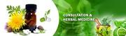 Alternative Medicine in Meerut